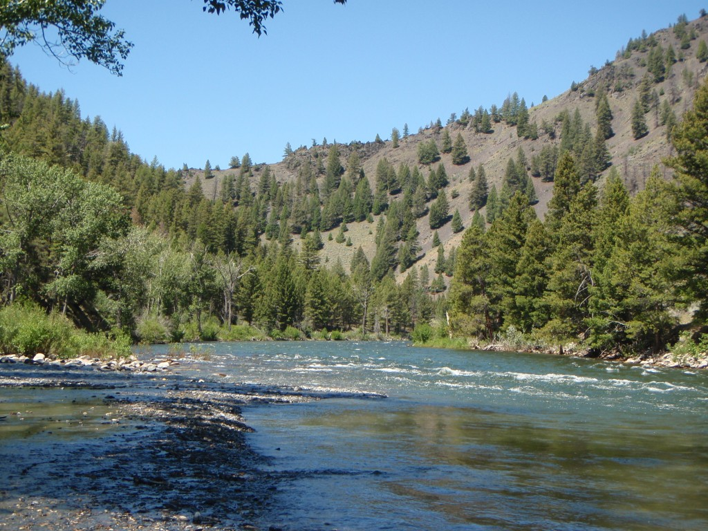 A view looking upstream from slate creek for Idaho fly fishing