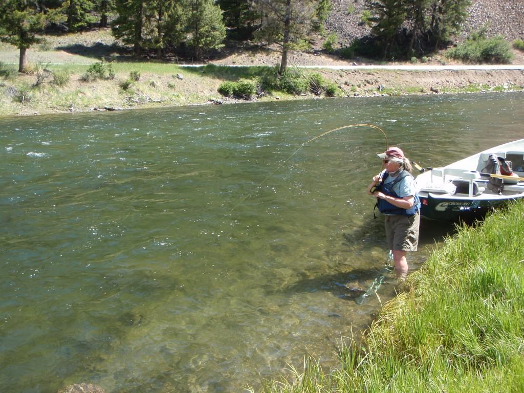 Stanley idaho fly fishing pursuits for Idaho fly fishing
