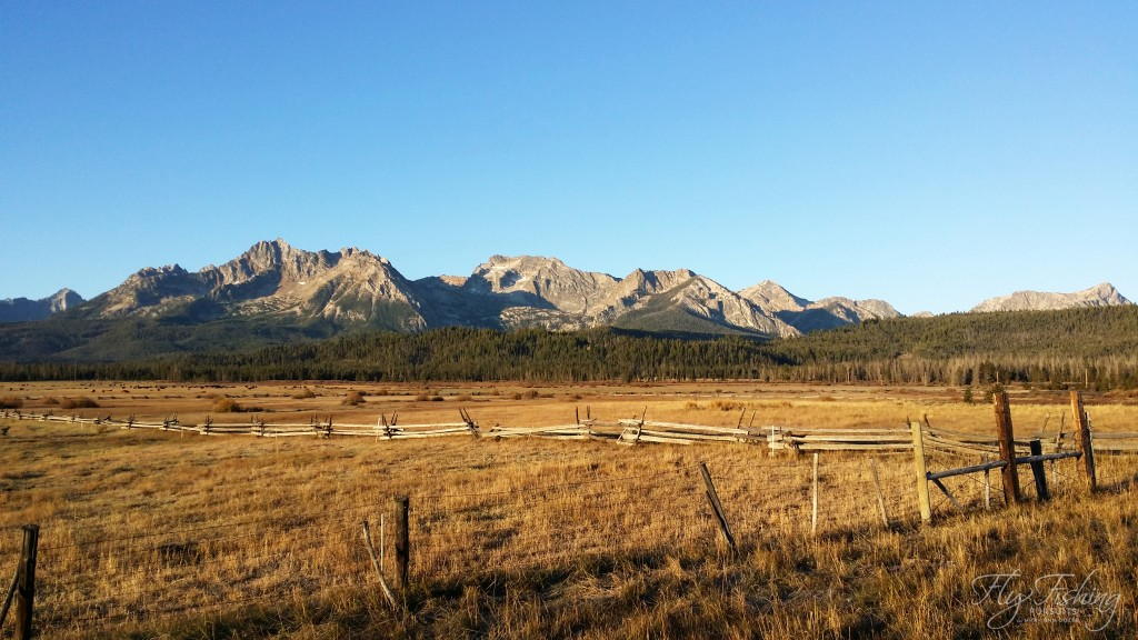 The Sawtooths  - in the warm glow of the morning sun.