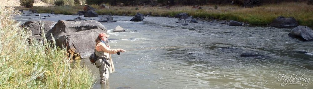 Fly Fishing Pursuits