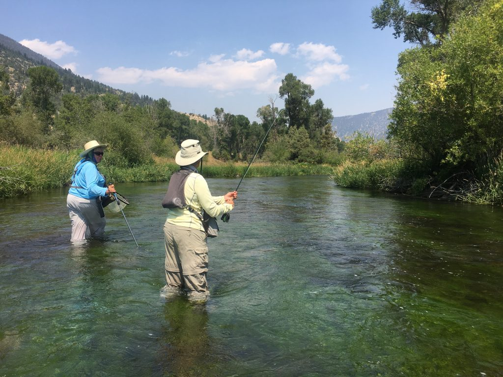 Mary Ann Dozer Fly Fishing Pursuits